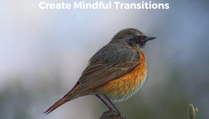 Mindful Transitions